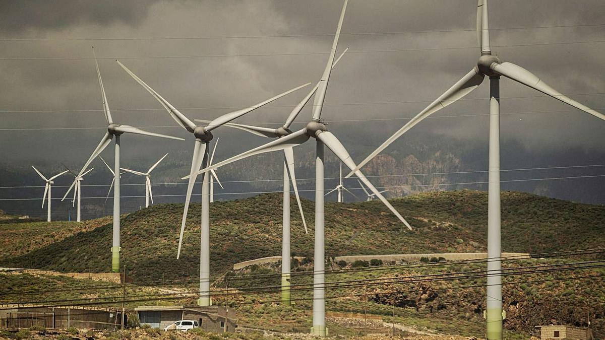 Parque eólico La Morra, en Arico | | ANDRÉS GUTIÉRREZ