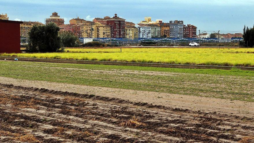 Alboraia mantiene el PGOU del 91 con el doble de población, dos colegios y un IES