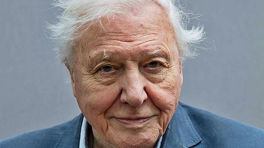 """Attenborough cree en un """"cambio"""" para atajar la crisis climática"""