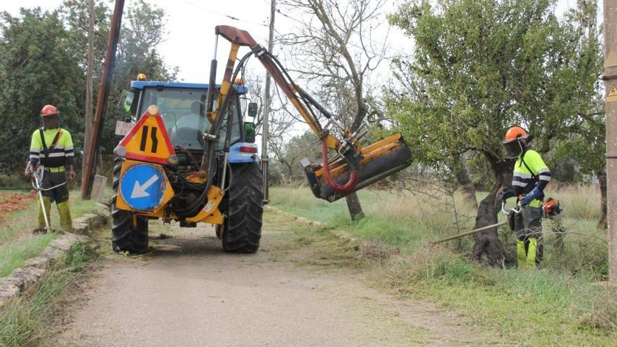 El Ayuntamiento desbroza los caminos que conectan con los cementerios de Palma