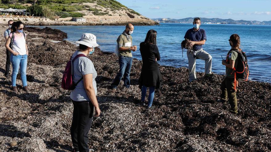 El Parque Natural de ses Salines de Ibiza y Formentera retoma sus actividades