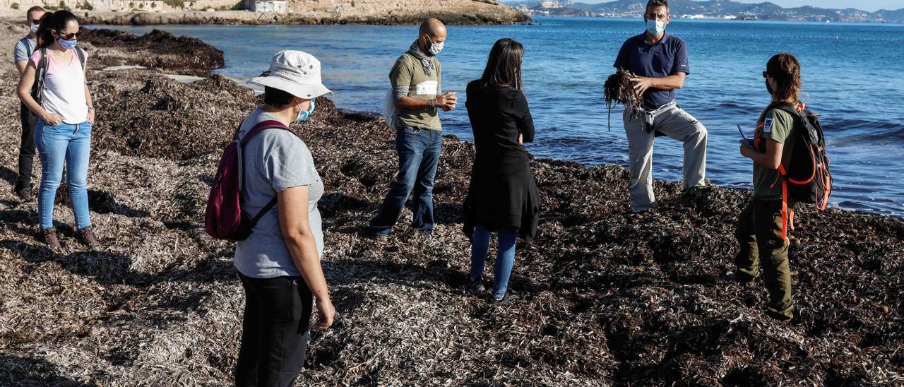 Imagen de una visita didáctica a es Cavallet con el geógrafo Fancesc Xavier Roig.