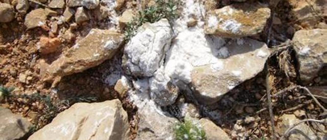 Investigan si el polvo desperdigado en una senda del Montgó es veneno