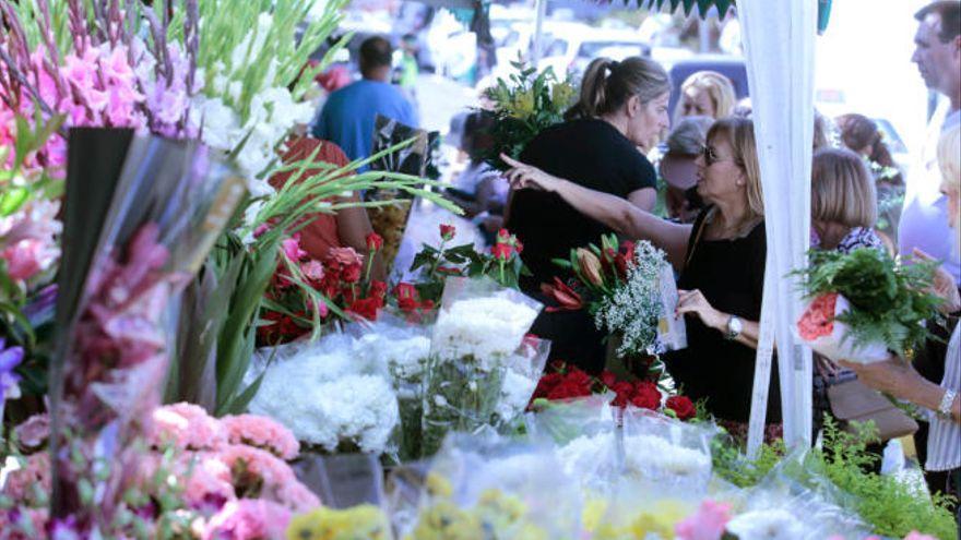 Agricultura paga 5 millones para compensar a la flor cortada