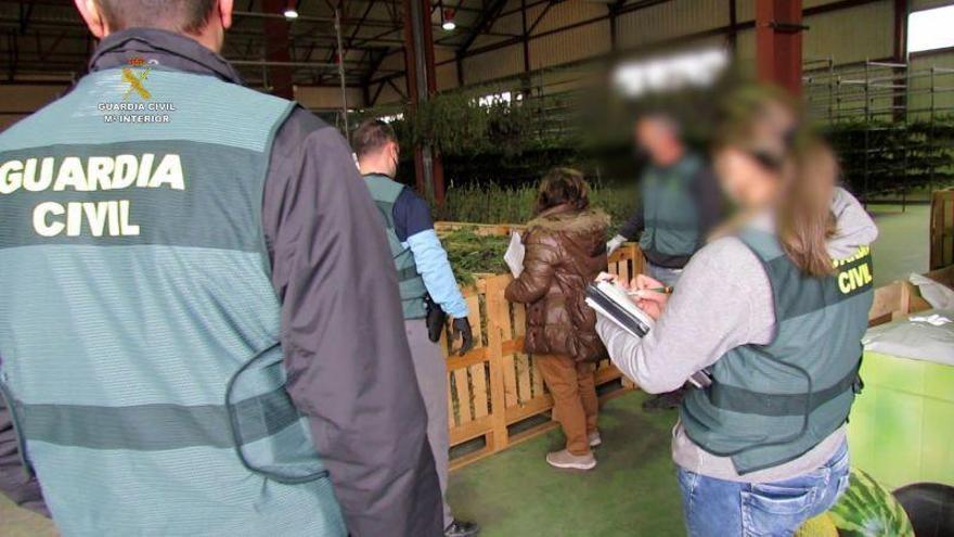 La Guardia Civil interviene más de cuatro toneladas de marihuana en Villel (Teruel) y detiene a tres personas