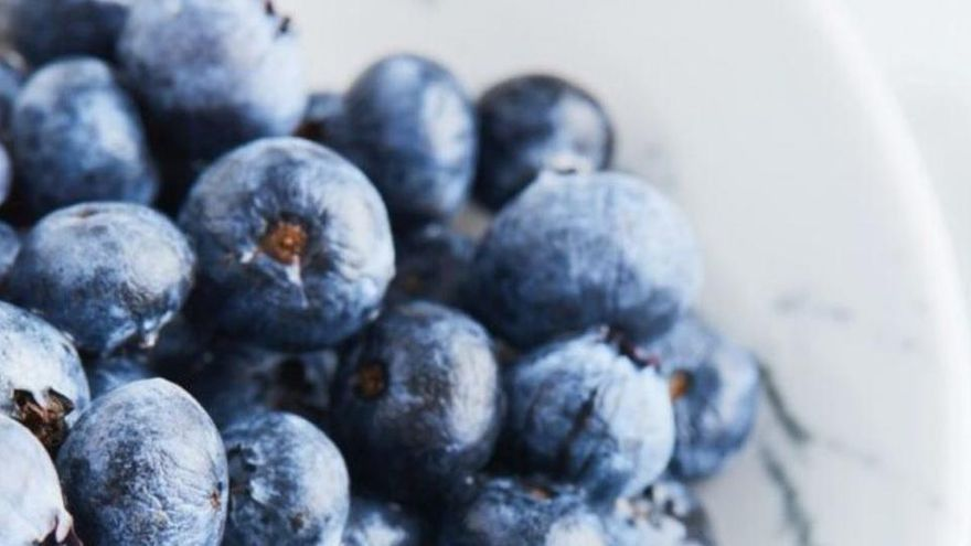 Revelen l'origen real del blau metàl·lic en la naturalesa
