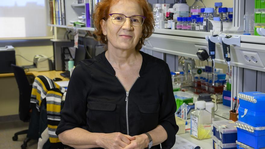 """Margarita del Val liderará la mesa redonda """"Ciencia en femenino"""""""
