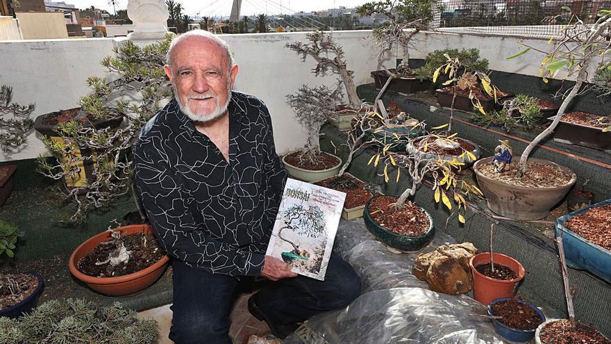Pepe Ferrando: «El chopo ilicitano es único y no se le presta atención como a la palmera»