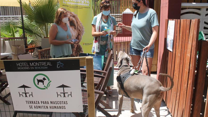 Benicàssim suma a hoteles y cámpings a la campaña de concienciación sobre mascotas
