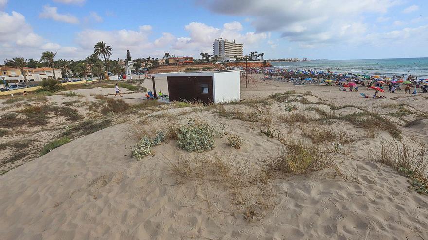 Un proyecto del Ayuntamiento y Costas salvará del impacto turístico a las dos únicas dunas costeras de Orihuela