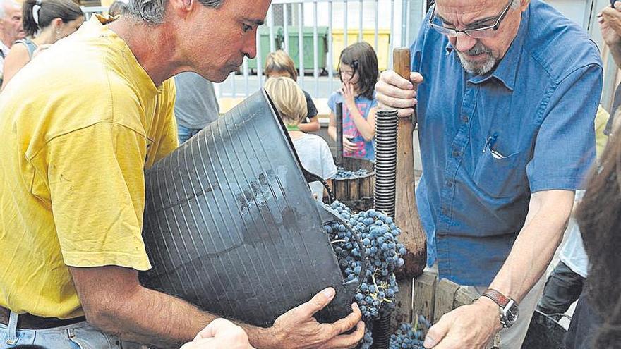 Temps de verema: les propostes dels cellers del Bages per als amants del vi