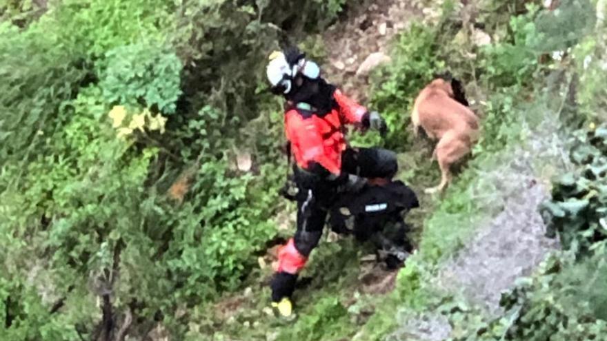 Complicado rescate de un perro en el Tajo de Ronda