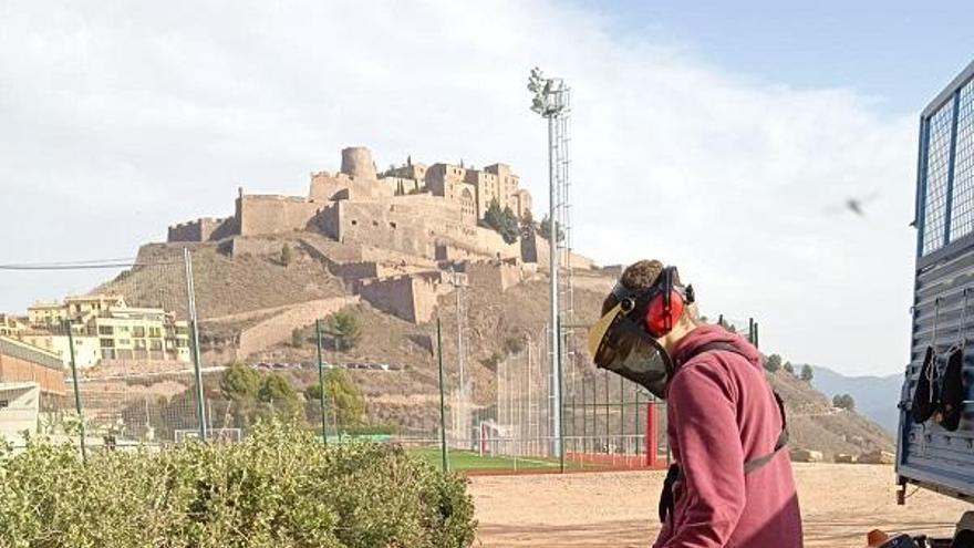 Cardona inicia els plans d'ocupació i formació del programa «Treball als barris»
