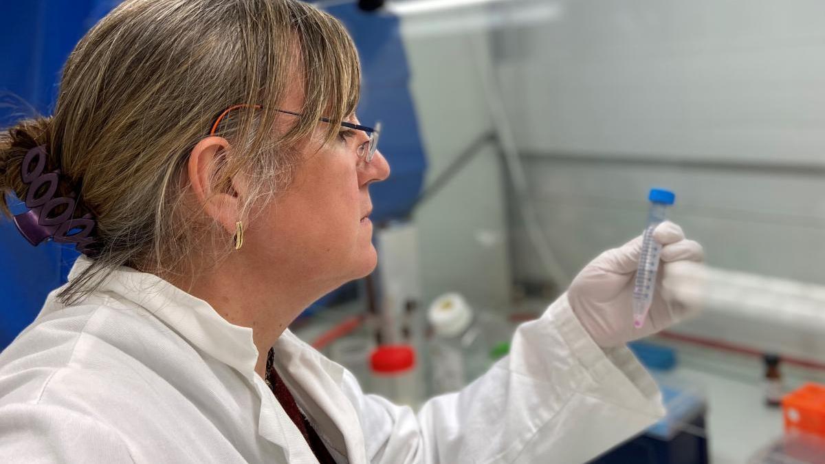 """Entrevista a Elena Vecino, investigadora zamorana que estudia el contagio del coronavirus por las lágrimas de los ojos: """"Mientras haya un contagio activo, el rebrote es posible"""""""