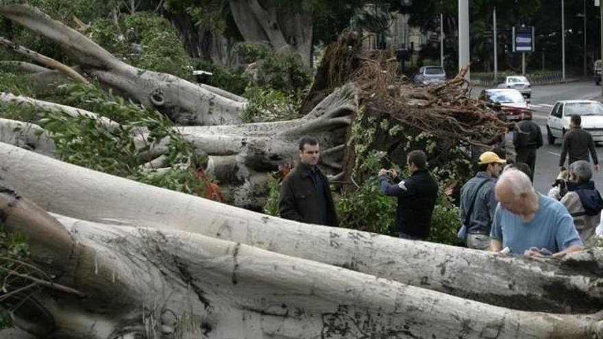 'Delta', la última tormenta tropical que pasó por Canarias en imágenes