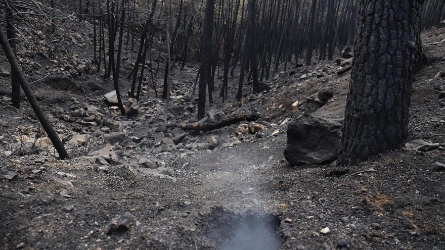 Continúan los trabajos en el incendio de Sierra Bermeja para liquidar puntos calientes