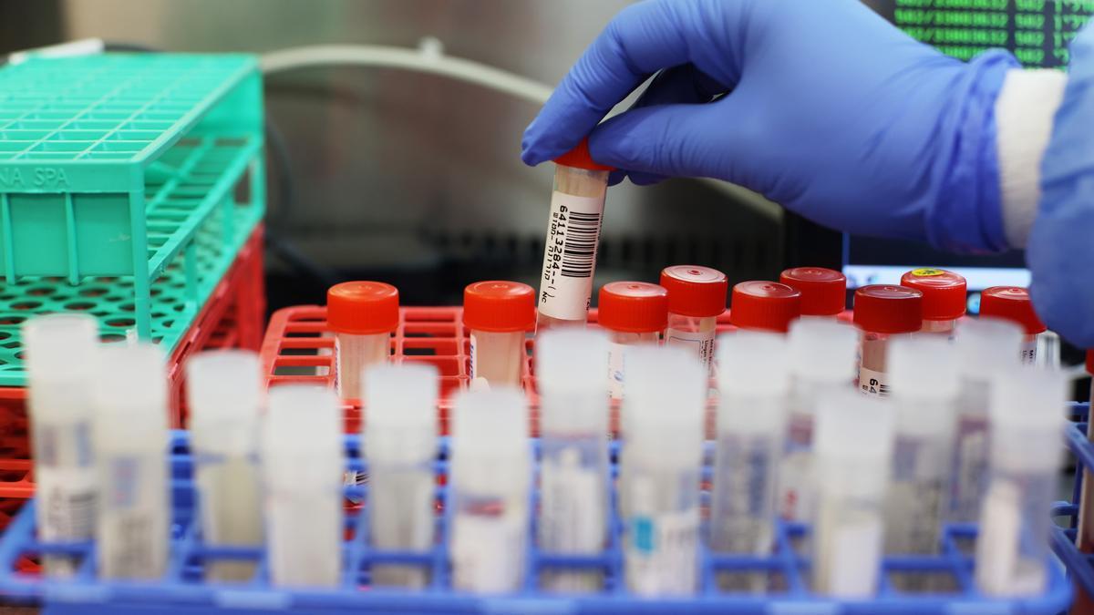 Test tubes in a coronavirus testing laboratory in Israel
