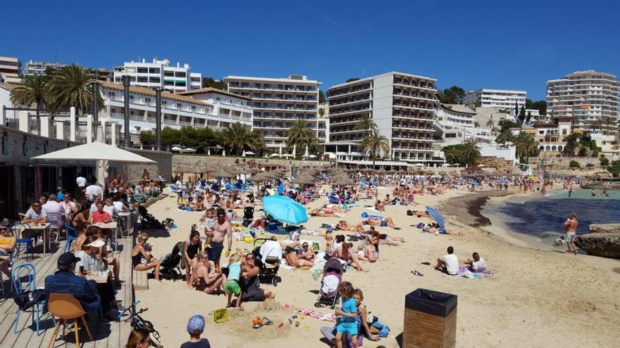 Seis playas de Mallorca pierden las banderas azules en 2019