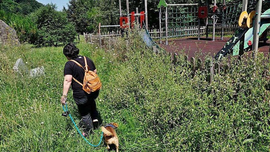 """Podemos pide que la privatización de la jardinería sea solo """"transitoria"""""""