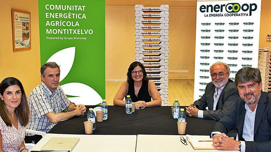 La cooperativa de Montitxelvo invierte 100.000 € en una instalación renovable