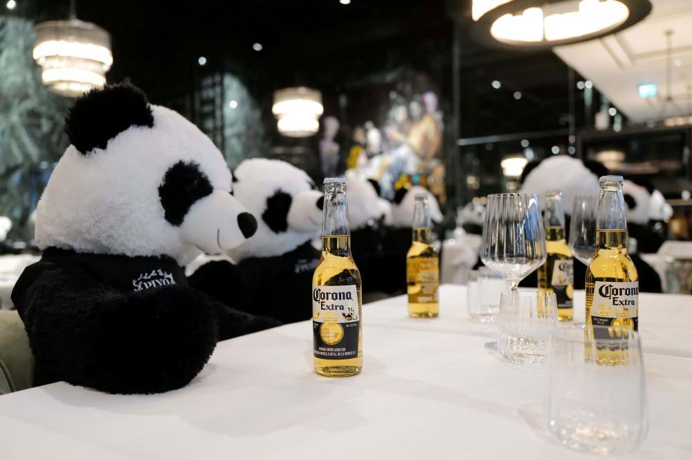 Osos Panda en el 'Pino' de NY