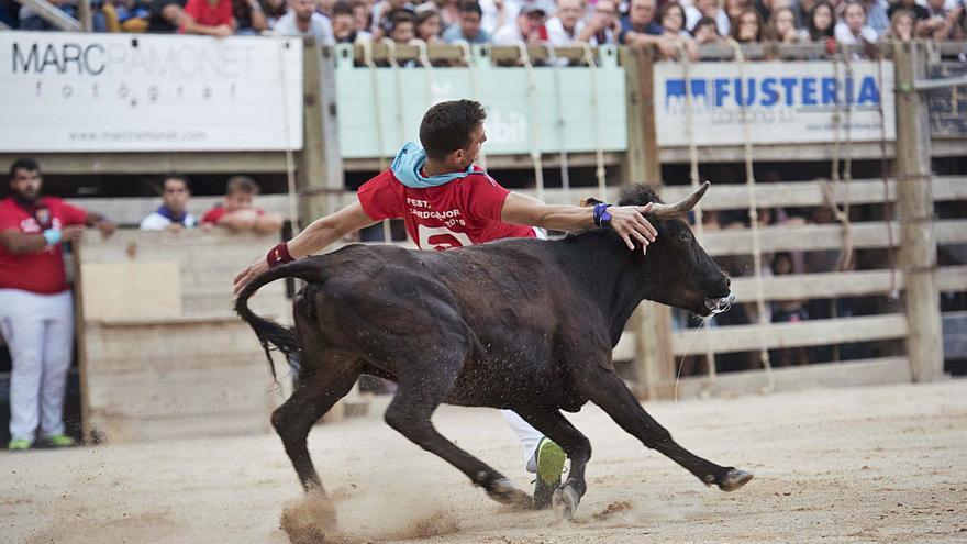 Cardona fa festa major amb un corre de bou més restringit