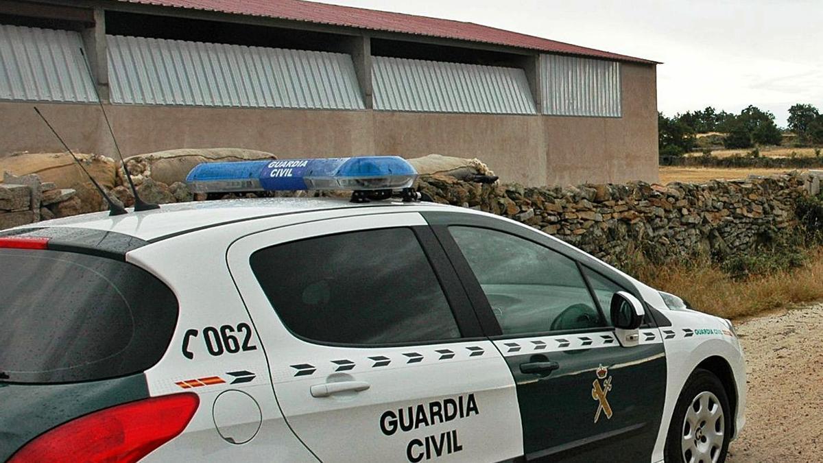 Un coche de la Guardia Civil en la nave ganadera asaltada en Moraleja del Vino. | Cedida