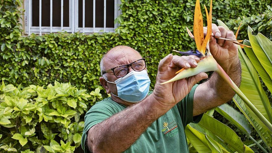 Jardines urbanos libres de productos químicos
