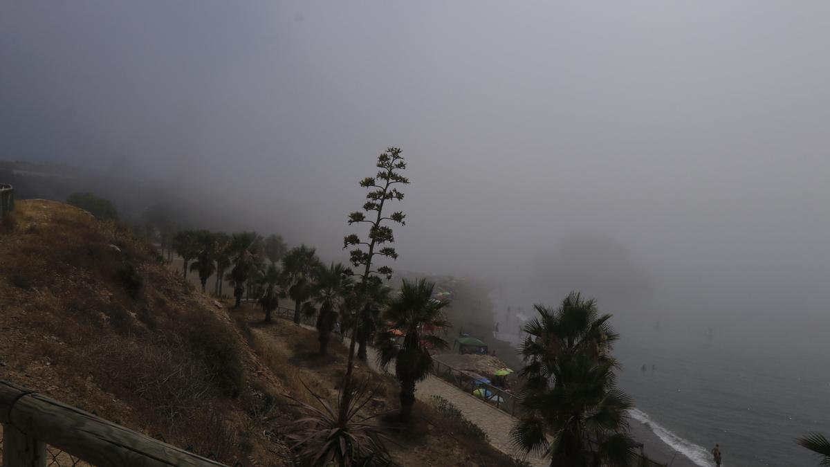 Domingo de taró en el litoral malagueño