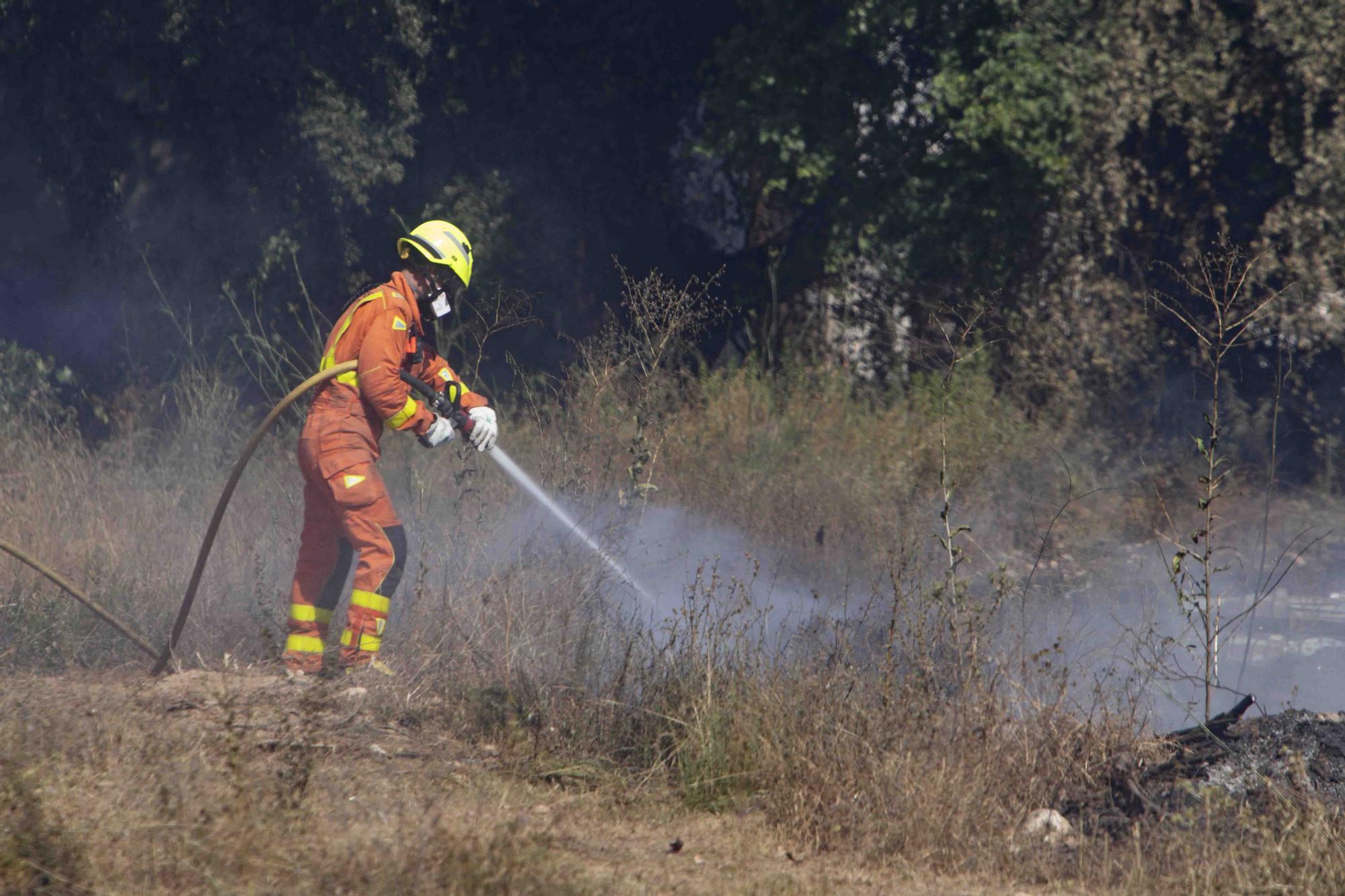 Los incendios de Ontinyent y L'Olleria movilizan una importancia dotación de bomberos y hasta 16 medios áreos