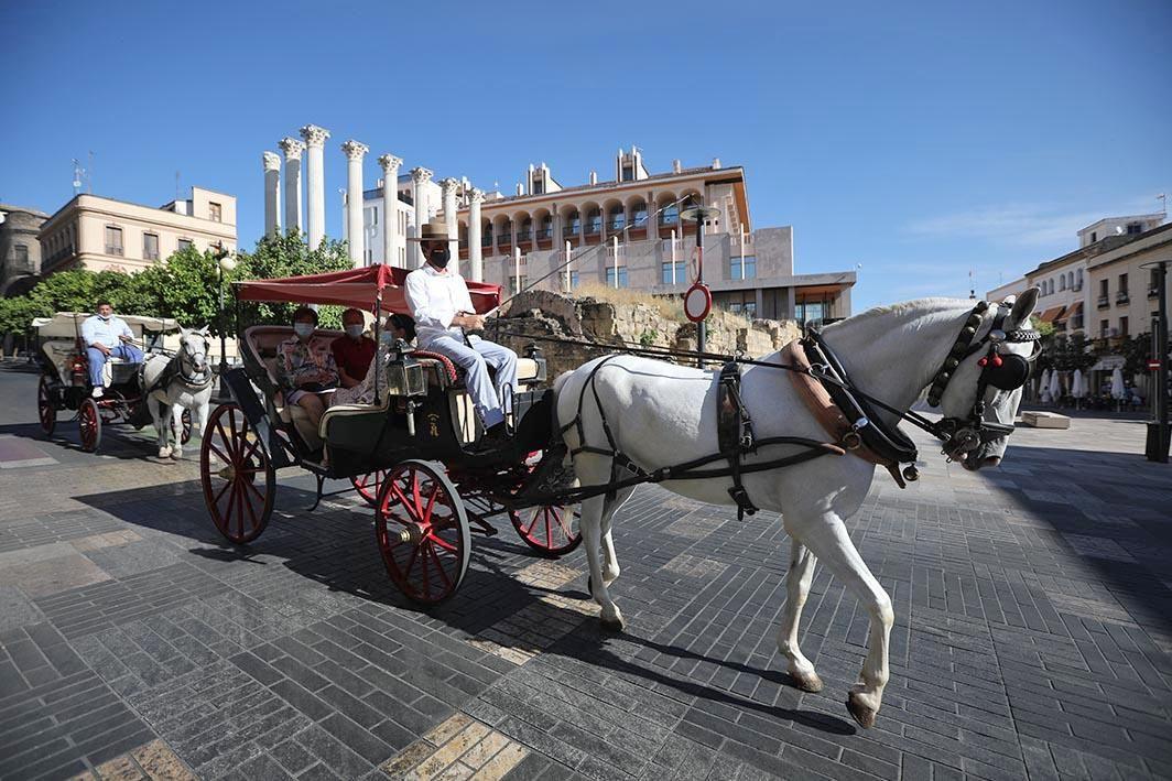 Nueva normalidad en Córdoba: la Judería despierta al turismo