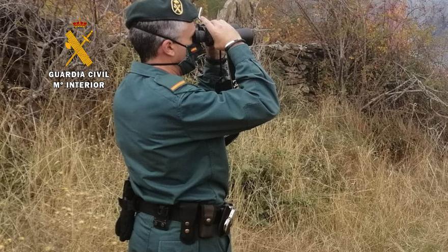 La Guardia Civil investiga a un vecino de Sanabria por cinco incendios forestales