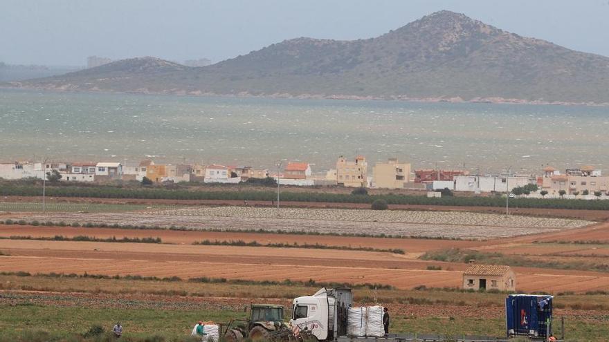 La Ley del Mar Menor solo permitirá la agricultura ecológica en la franja de 1.500 metros