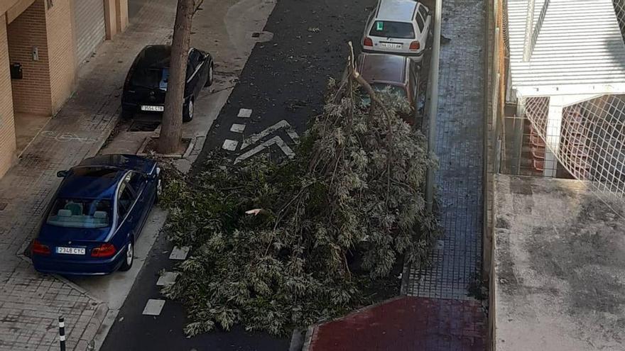 Mislata, Paiporta y Sedaví cierran los cementerios por el viento