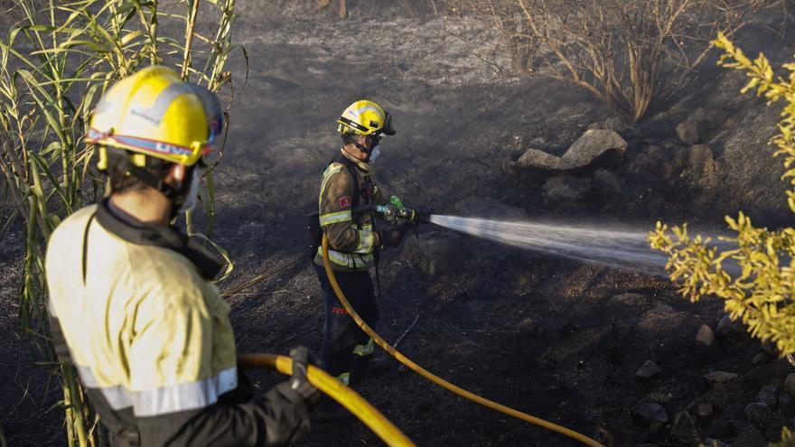 Cremen 5.500 metres quadrats d'un camp segat d'Aiguaviva