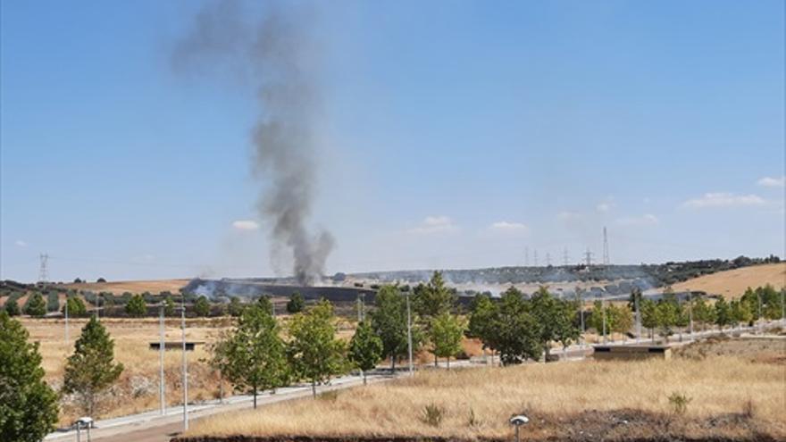 Incendio de pastos en Plantonal de Vera