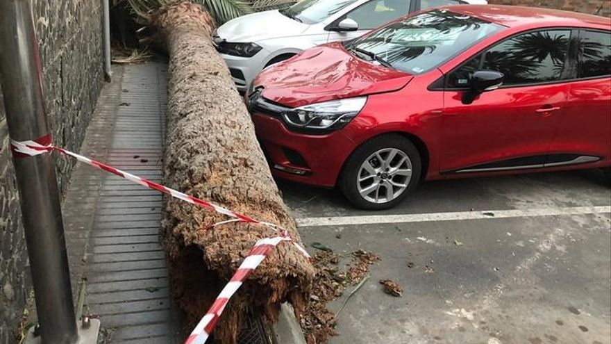 Consecuencias del viento en Canarias