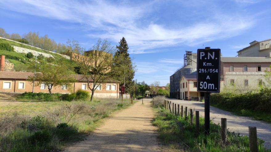 El Camino Natural de la Vía de la Plata en Zamora, sin mantenimiento
