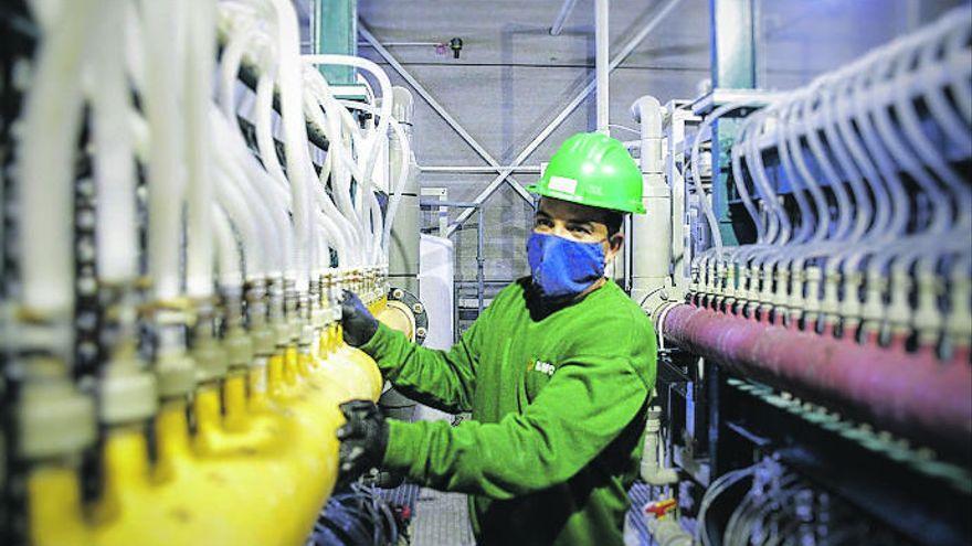 La producción industrial en Canarias cae un 15,5% en enero