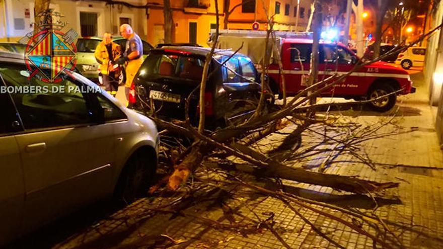 El fuerte viento deja 160 incidentes en Baleares