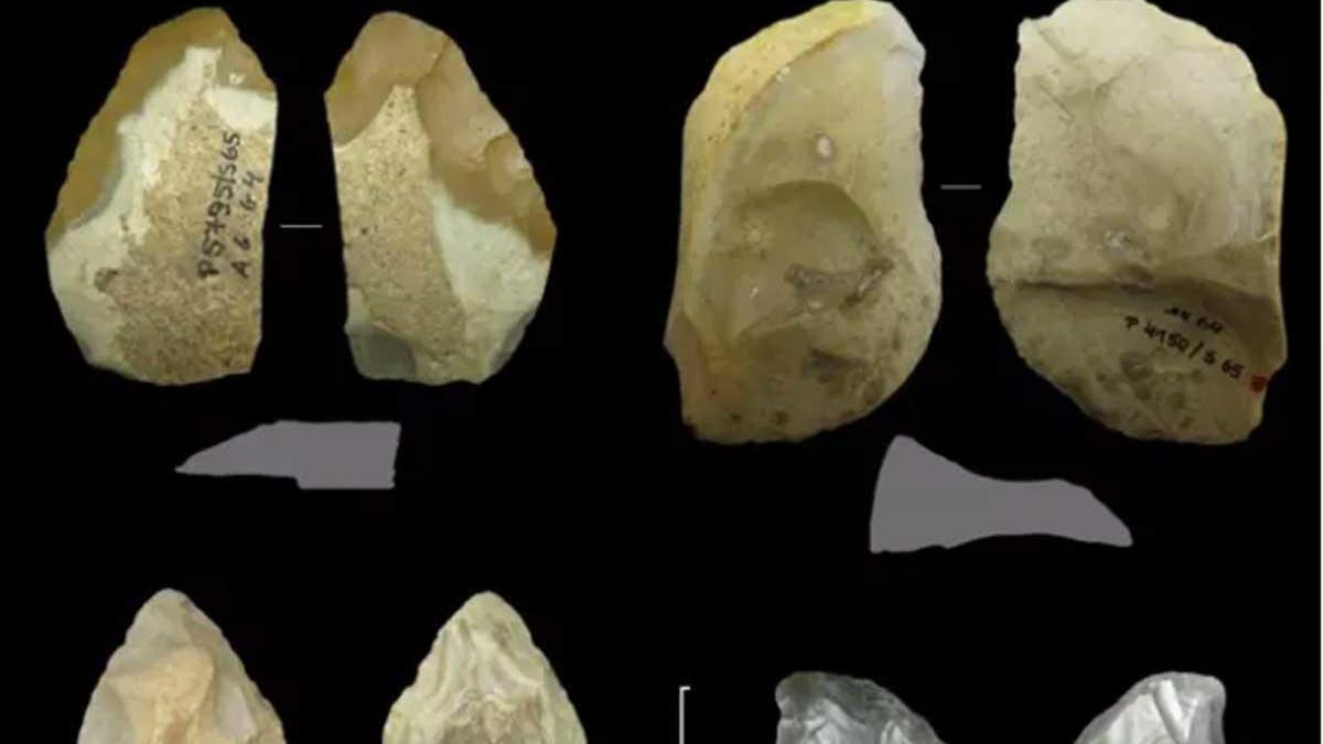 Un cuchillo con respaldo simple (arriba a la derecha) del período neandertal.