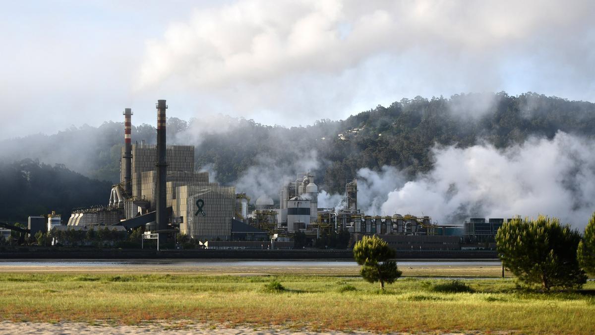 Fábrica de Ence en la ría de Pontevedra.