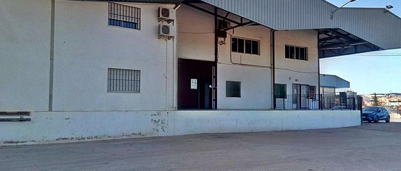 Instalaciones de la cooperativa agrícola de Real. | LEVANTE-EMV