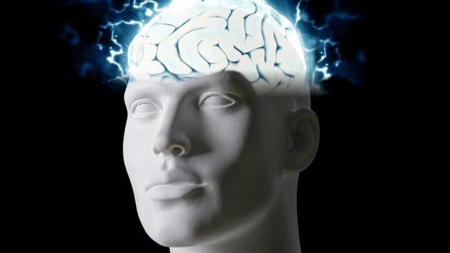 Identificadas las neuronas que mantienen nuestros pensamientos ocultos