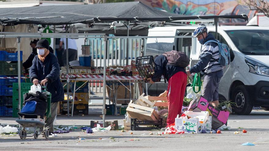 Desechos que alimentan en Alicante
