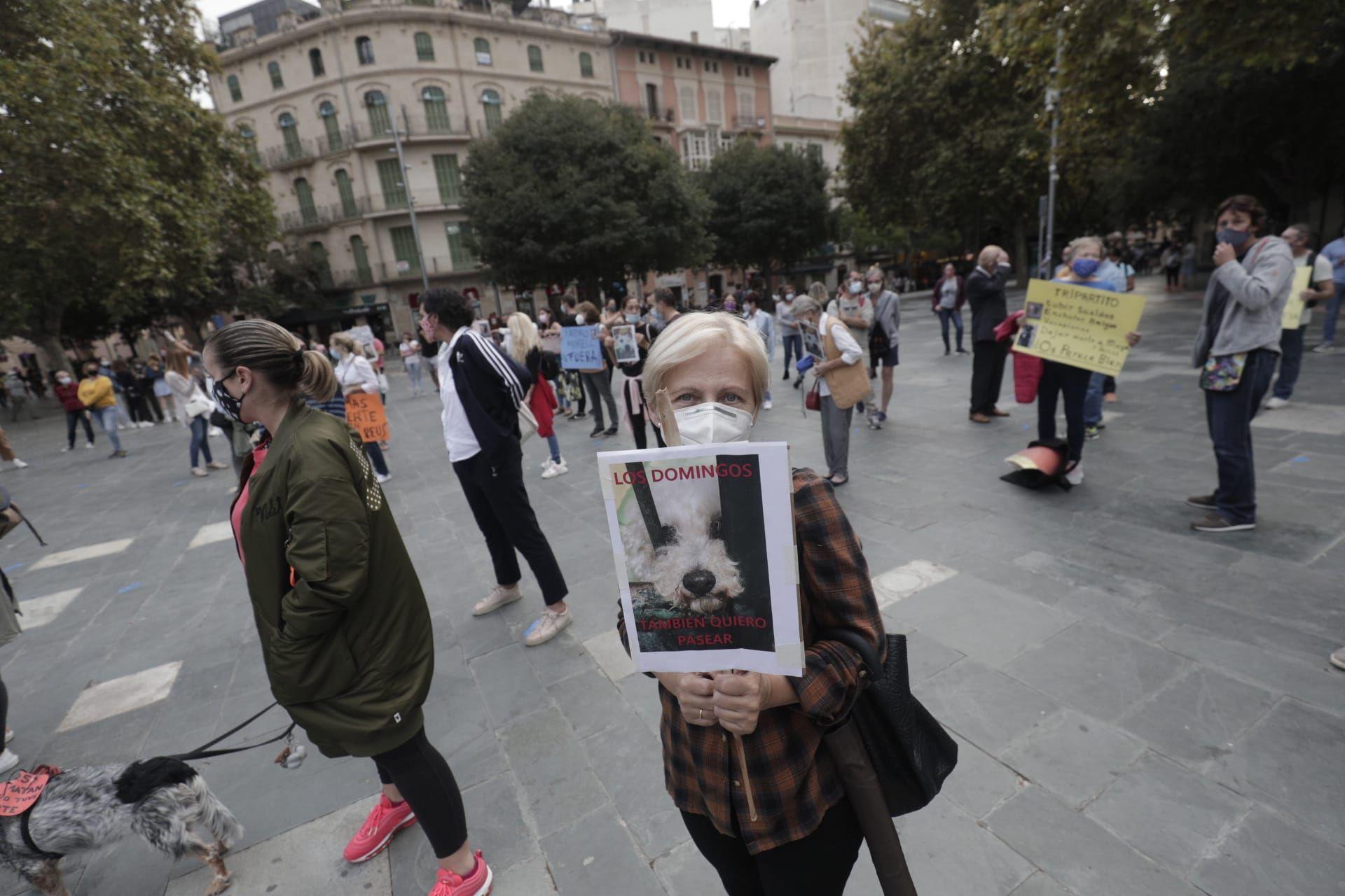 Manifestación por Venus, la perra pitbull que murió desangrada en Son Reus