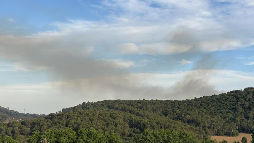 Quatre dotacions rematen punts calents de l'incendi de Collserola durant la nit i continuen les tasques aquest matí