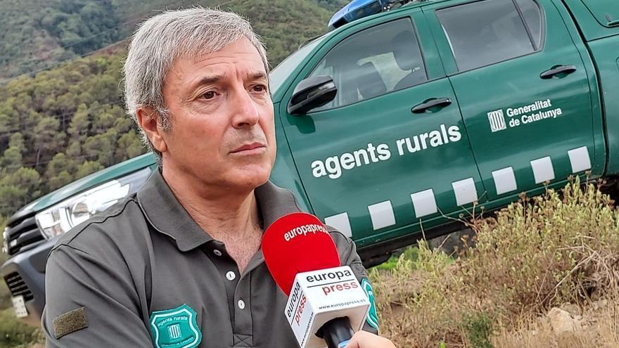Els Agents Rurals comptabilitzen 264 incendis i 2.822 hectàrees cremades des del 15 de juny