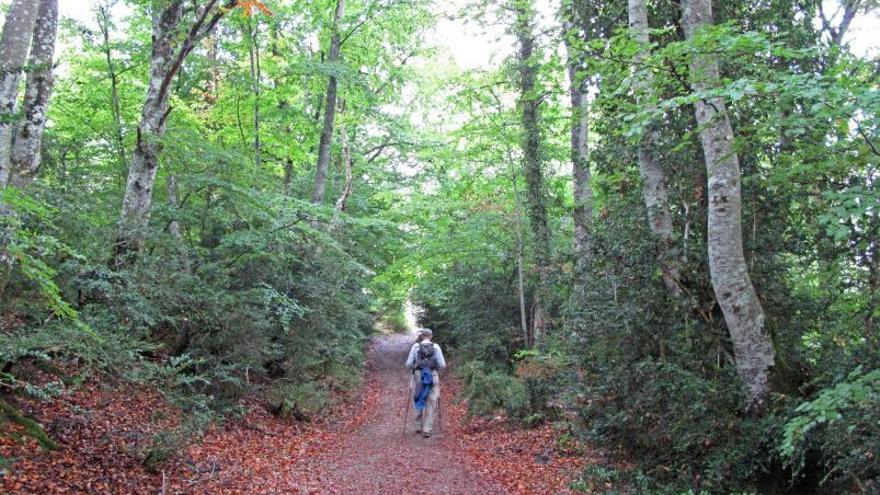 Los dueños de montes ganarán dinero por su uso recreativo