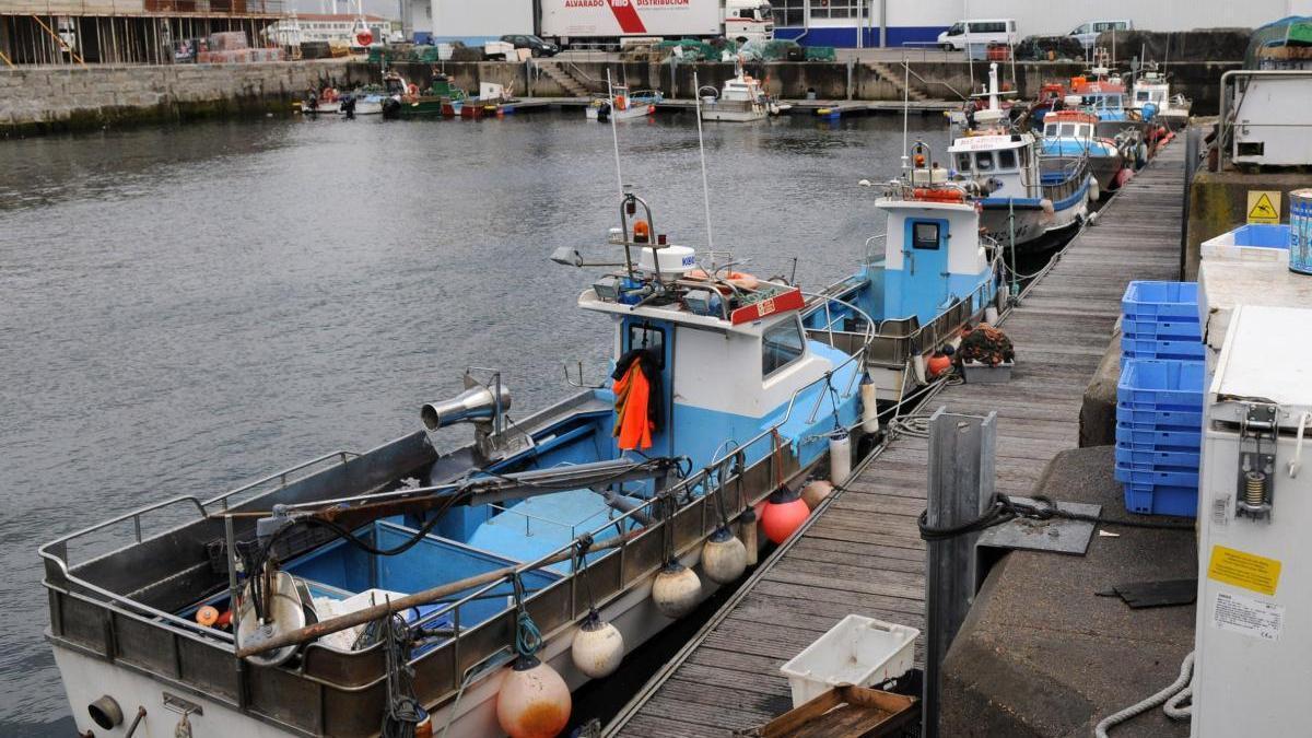 Barcos amarrados en el puerto de Marín. // G. Santos